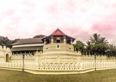 Tribute_Lanka_Tours_16