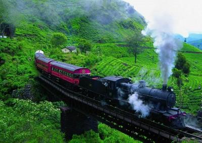 Tribute_Lanka_Tours_17
