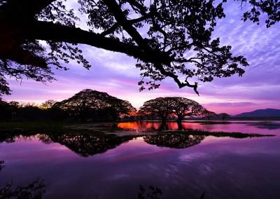 Tribute_Lanka_Tours_10
